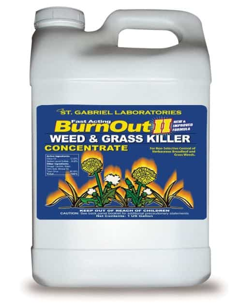 Roundup Alternative - Burnout II Weed and Grass Killer