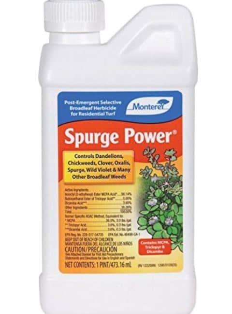 Dicamba herbicide for creeping charlie Monterey LG 5600 Spurge Power Herbicide