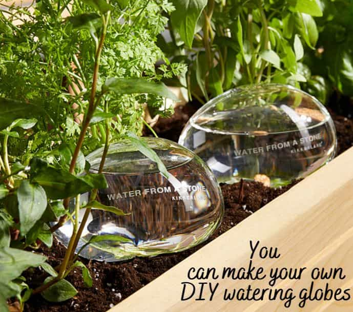 You can make your own watering globes that last longer than 14 days
