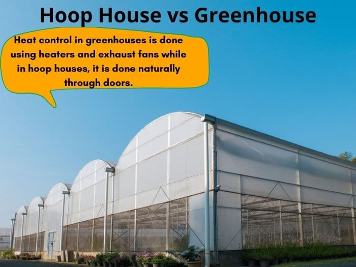 Hoop house vs greenhouse - differences