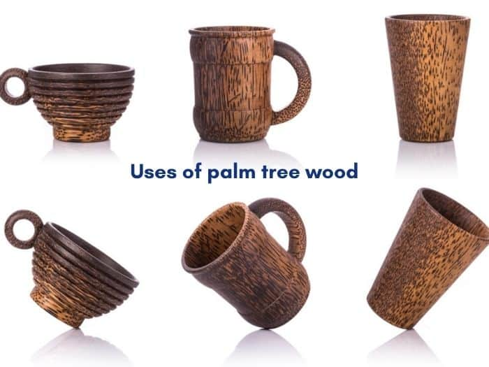Uses of palm tree wood.